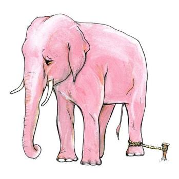 elephant-on-stake